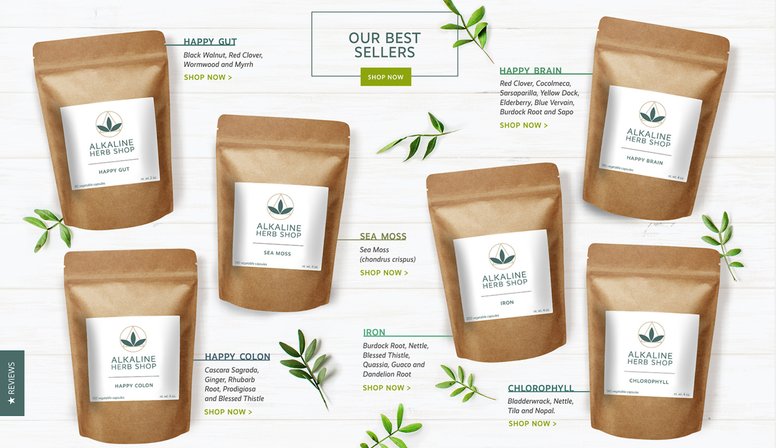 Alkaline Herb Shop supplement brand clean website design featuring packaging of best-selling products.