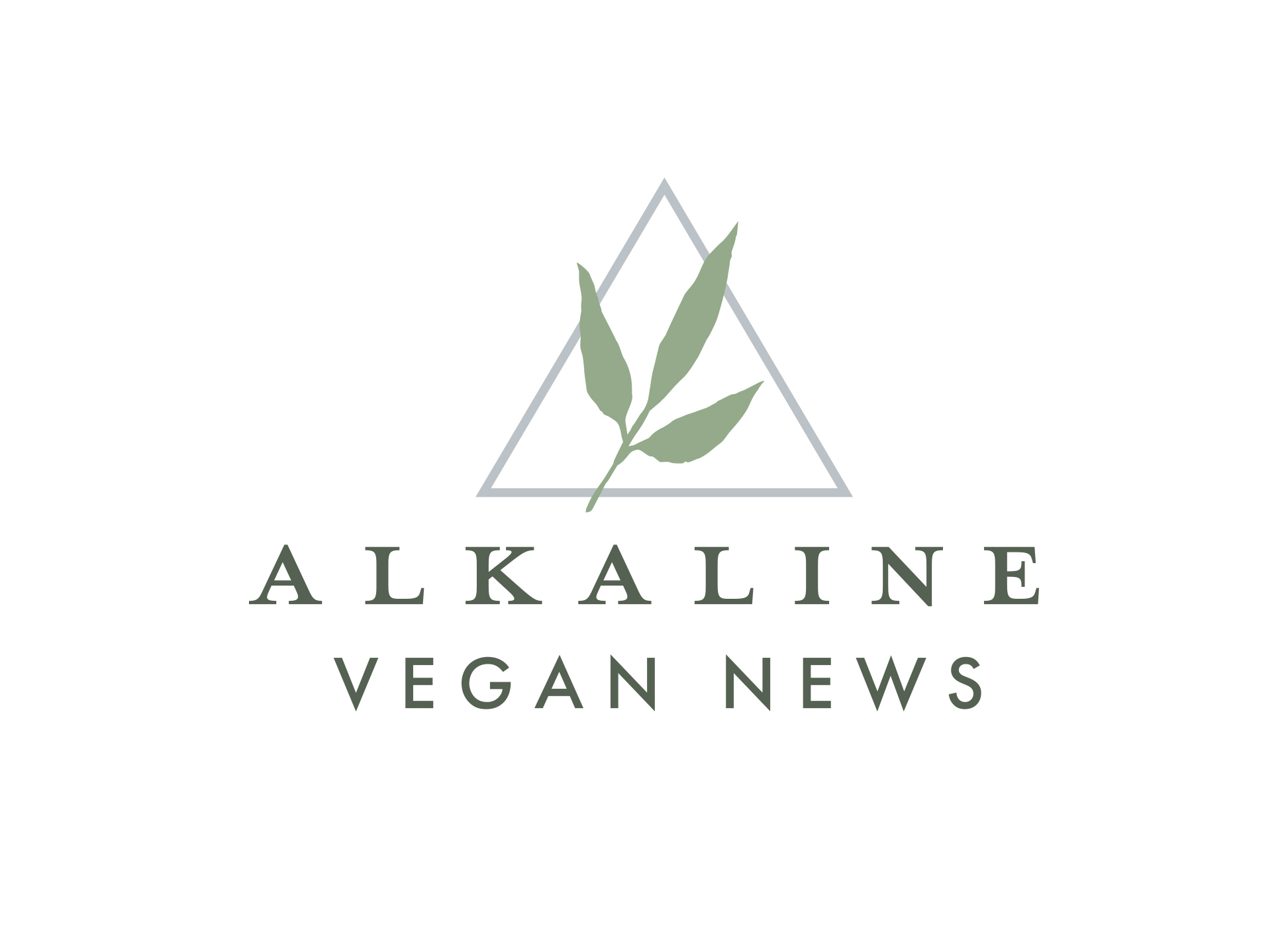 Alkaline Vegan News brand identity logo design using botanical and geometric elements with triangle and leaf above text.