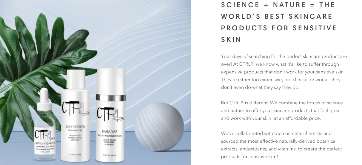 CTRL Cosmetics website design showcasing the homepage header with products and short description.