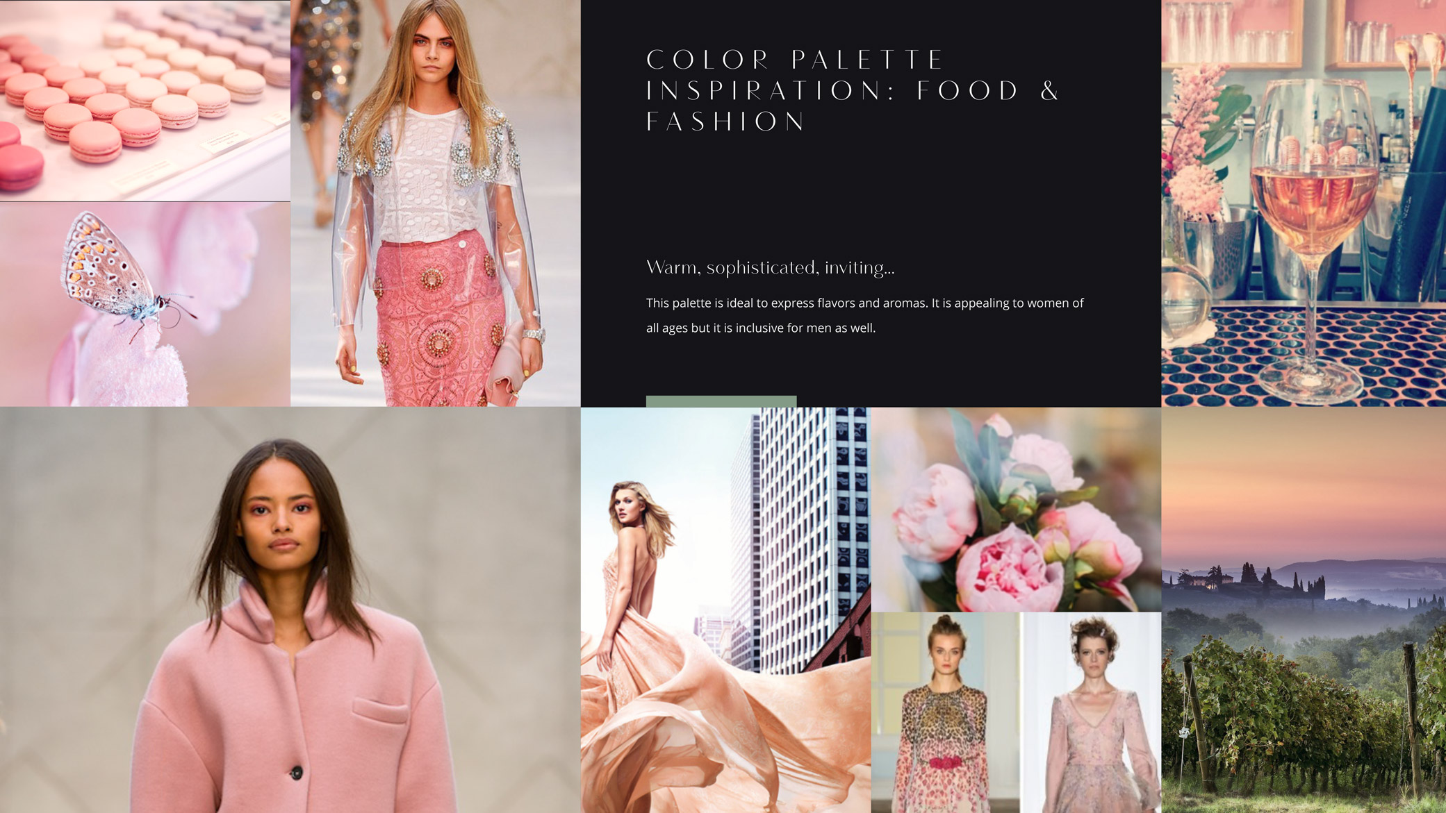 Notorious Pink wine company brand refresh storyboard with pink macarons, high-end designer gowns, and botanicals.