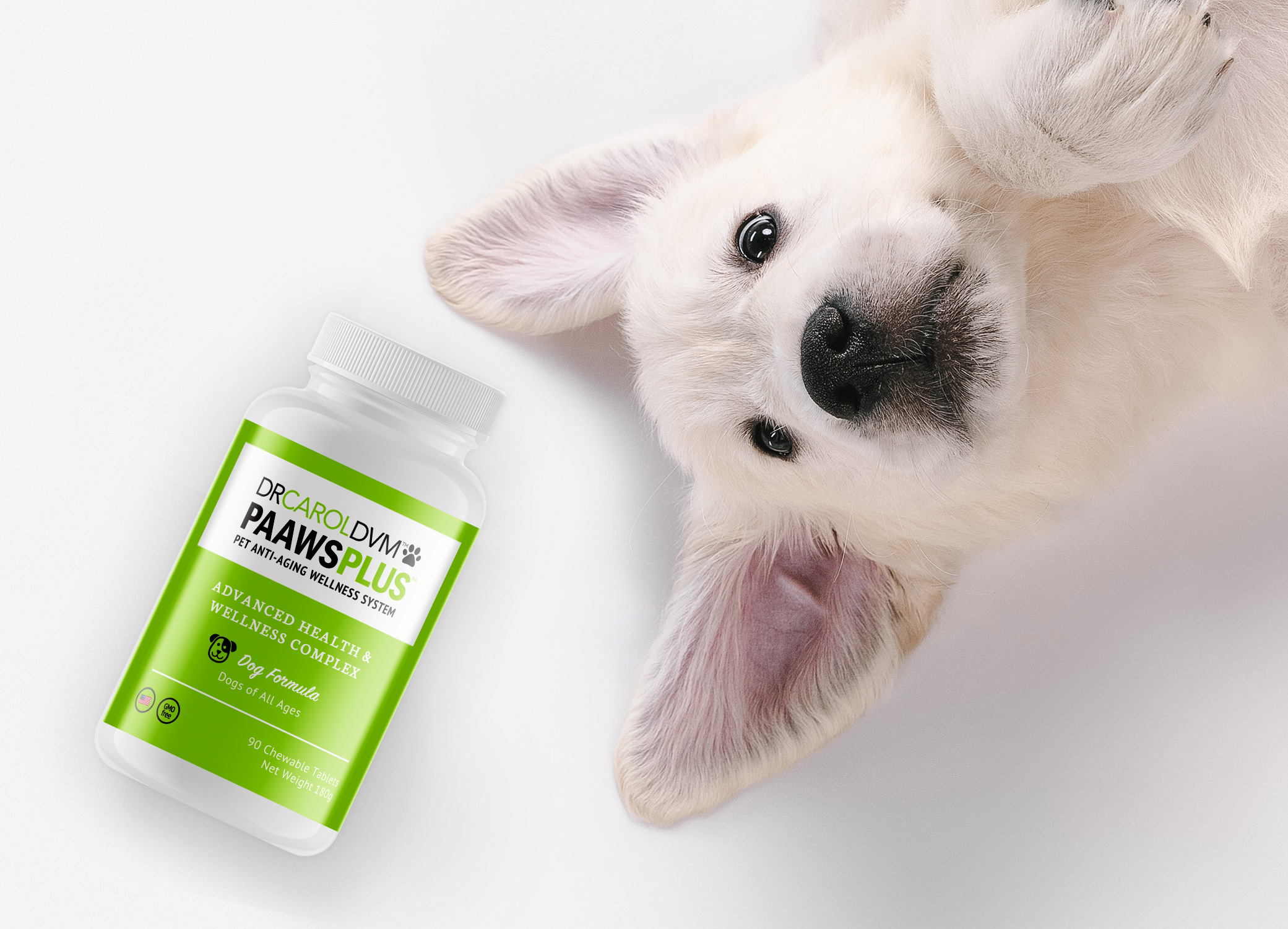 Dr. Carol pet product labels supplement bottle design next to friendly dog laying against light grey backdrop.